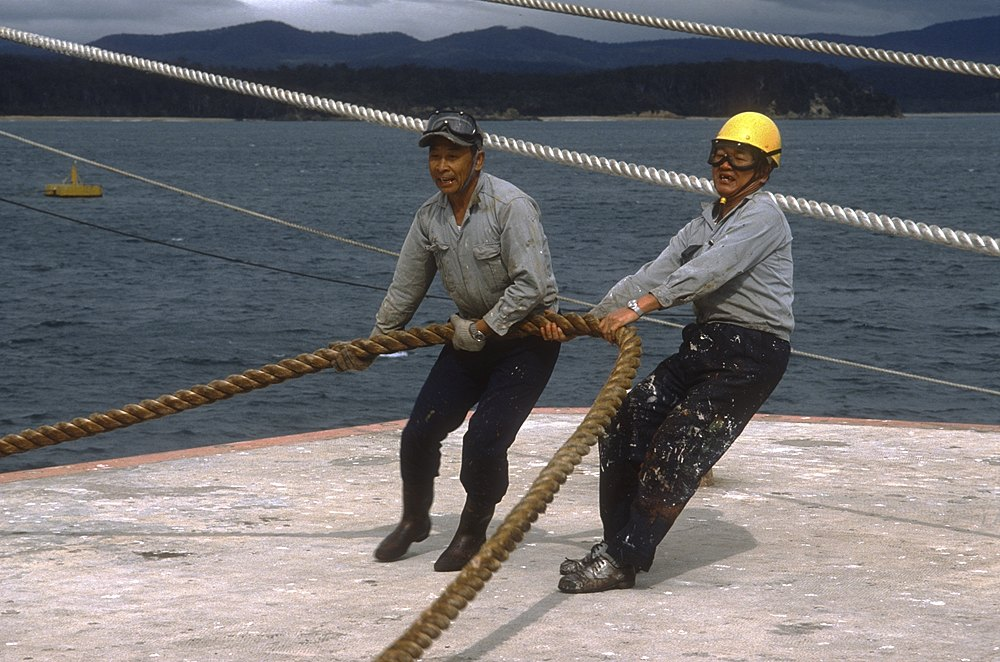 Sailors haul on rope :: near Eden, NSW